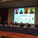 Siminario RSE y ONG Universidad Rey Juan Carlos